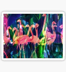 Flamingo Dance Sticker