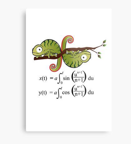 Euler Spiral Metal Print