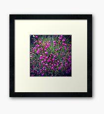 pretty flowers for my followers Framed Print