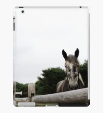 My Wonderful Yogi iPad Case/Skin