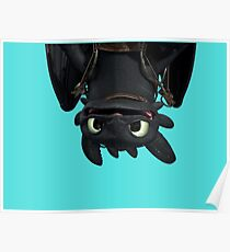 Upside Down Toothless Poster