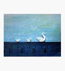 3cm Family Swim Photographic Print