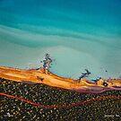 Broome Coastline by Sheldon Pettit