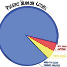 Headache Causes Pie Chart by Amy-Elyse Neer