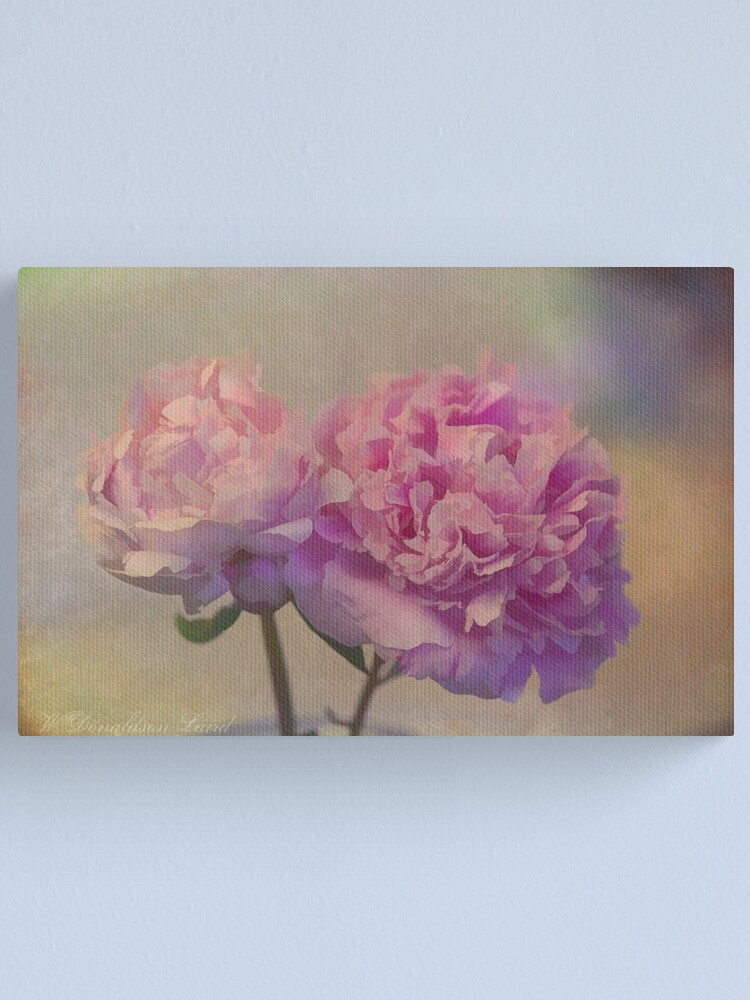 Alternate view of Peonies from Karen's Garden Canvas Print