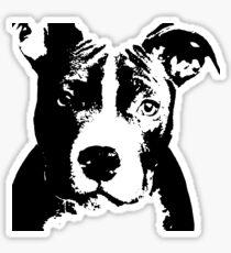 Pitbull Love Sticker
