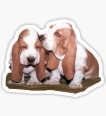 Just the Two of Us [actually Nicki and Sam larger pic] Sticker