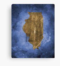 Illinois Texture Canvas Print