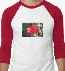 Vector Style Poppy With Natural Background  Men's Baseball ¾ T-Shirt