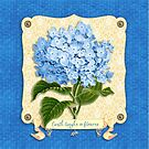 Earth Laughs In Flowers Blue Hydrangea Yellow Damask by Beverly Claire Kaiya