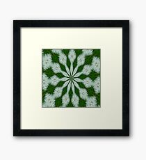 Taraxacum Officinale Seed Abstract Kaleidoscope Framed Print