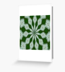 Taraxacum Officinale Seed Abstract Kaleidoscope Greeting Card