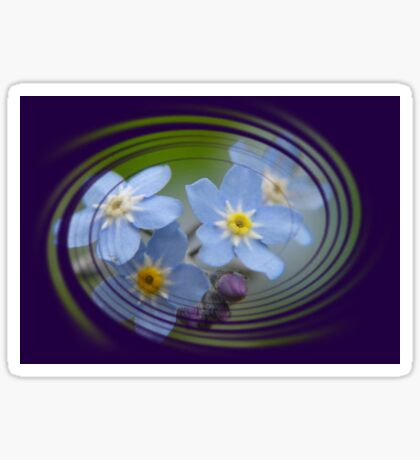 Forget-Me-Not with Decorative Border Greeting Card Sticker
