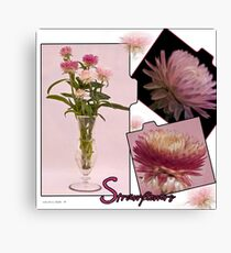 Photo Collage Of Strawflowers Canvas Print