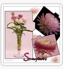 Photo Collage Of Strawflowers Sticker