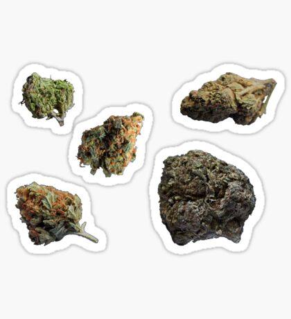420 Buds #74 Sticker