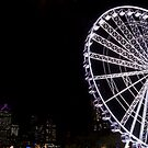 Wheel of Brisbane by Sherene Clow