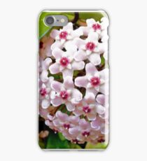 Hoya Carnosa iPhone Case/Skin