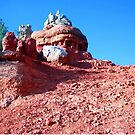 Red Rock Canyon Hoodoo, Utah, May 2008 by Laura Puglia