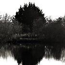 winter days refelction by Essexbeginner