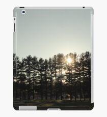 Iroquois springs tree scene iPad Case/Skin