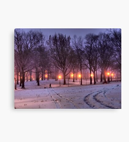 Winter Sledding Canvas Print