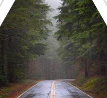 Forest Road Sticker