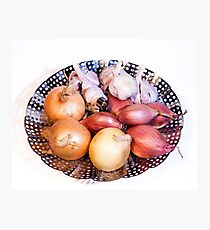 onion, shallot, garlic Photographic Print