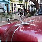 Havana Hood Ornament by ponycargirl