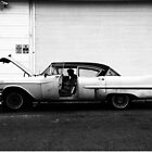 37th Street Fleetwood by ponycargirl