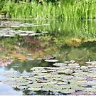By the pond - Monet's graden by Vickie Simons