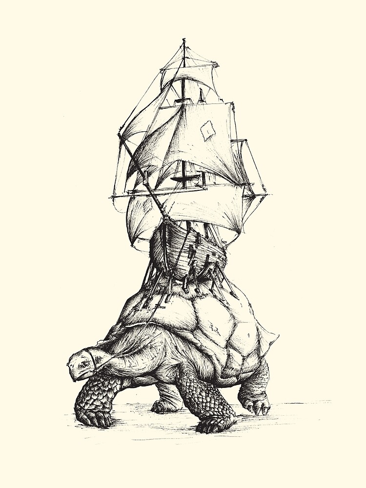 Tortoise Travel by Fatink