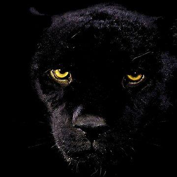 Black Panther by pinestopalms