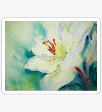 Lily White Sticker