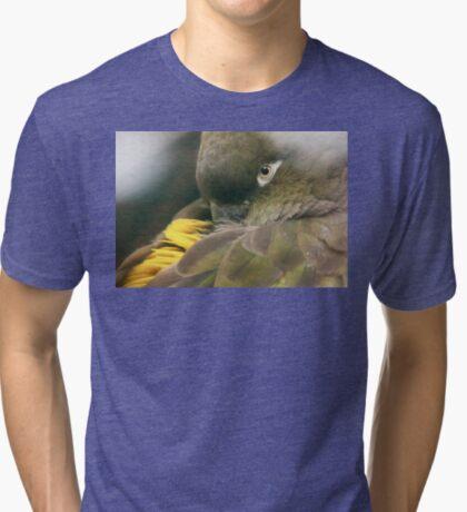 Burrowing Parrot Tri-blend T-Shirt