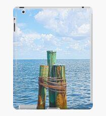 Three Friends in the Sea iPad Case/Skin