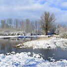 A Sunny Snowy Day by ienemien