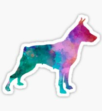 Miniature Pinscher in watercolor Sticker