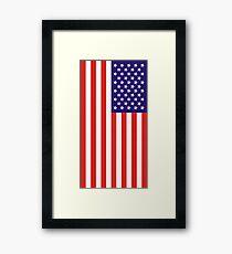 US National Flag Framed Print