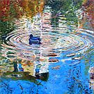 Bercy Pond by triciamary