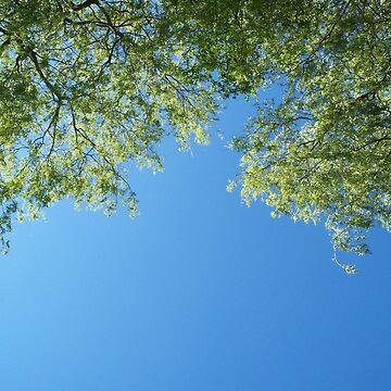 Leaf-Framed Sky 2 by CraftSalad