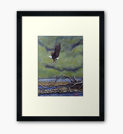 Eagle River Framed Print