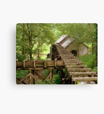 Deep in the Woods.......^ Canvas Print
