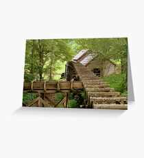 Deep in the Woods.......^ Greeting Card