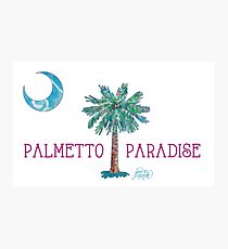 Palmetto Paradise by Jan Marvin Photographic Print