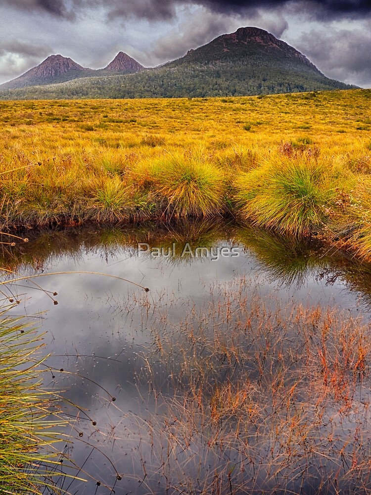 King William Range by Paul Amyes