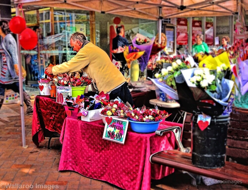 The Rose Seller by wallarooimages
