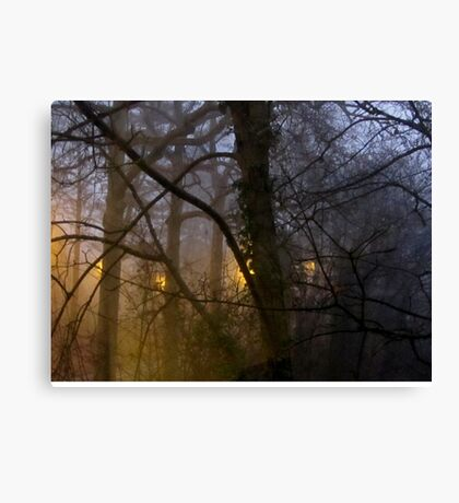 Day 1 - New Year's Morning 2016 Canvas Print