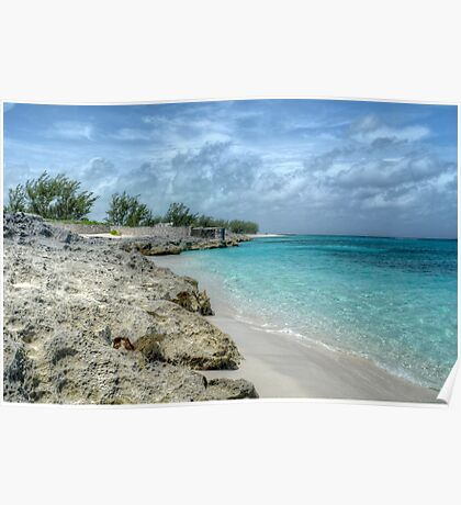 Beach in Paradise island, The Bahamas Poster