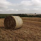 Hay Bale by Vicki Spindler (VHS Photography)